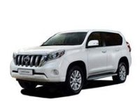 Автоковрики Toyota Land Cruiser Prado 150 (2009-…)